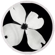 Black And White Dogwood Bloom Round Beach Towel