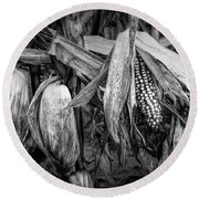 Black And White Ear Of Corn On The Stalk Round Beach Towel