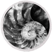 Black And White Nautilus Shell By Sharon Cummings Round Beach Towel