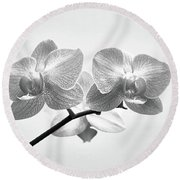 Black And White Orchids Round Beach Towel