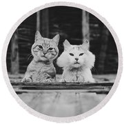 Black And White Portrait Of Two Aadorable And Curious Cats Looking Down Through The Window Round Beach Towel