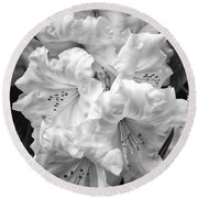 Black And White Rhododendron Round Beach Towel