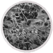 Black And White Sun Flowers  Round Beach Towel