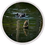 Black Bear Pictures 104 Round Beach Towel