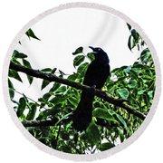 Black Bird Sings Round Beach Towel