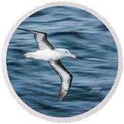 Black-browed Albatross Gliding Over Deep Blue Waves Round Beach Towel