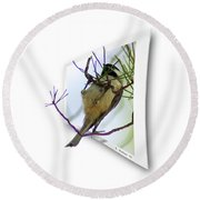 Black-capped Chick-a-dee Round Beach Towel