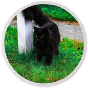 Black Cat Maine Round Beach Towel