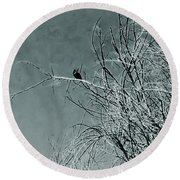Black Crow White Snow Round Beach Towel