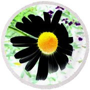 Black Daisy Round Beach Towel