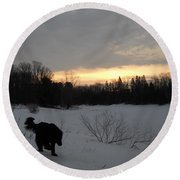 Black Dog Exploring Snow At Dawn Round Beach Towel