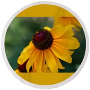 Black Eye Susan Round Beach Towel