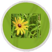 Black Eyed Susan V Round Beach Towel
