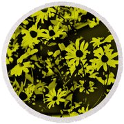Black Eyed Susan's Round Beach Towel