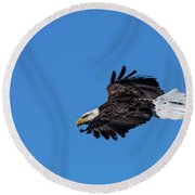 Black Feather Eagle Hunting Round Beach Towel