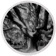 Black Forest Round Beach Towel by David Lee Thompson