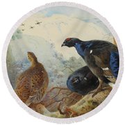 Black Grouse And Gamebirds By Thorburn Round Beach Towel
