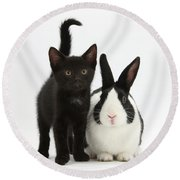 Black Kitten And Dutch Rabbit Round Beach Towel