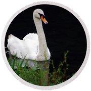 Black Mountain Swan Round Beach Towel