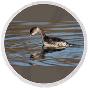 Black-necked Grebe About To Dive Round Beach Towel