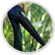 Black Necked Stork 1 Round Beach Towel