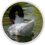 Black-necked Swan II Round Beach Towel