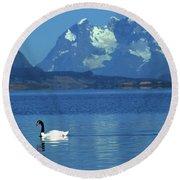 Black Necked Swan On Last Hope Sound Chile Round Beach Towel