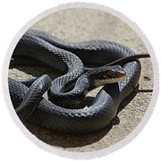 Black Racer Round Beach Towel
