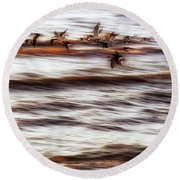 Black Skimmers Of Long Beach - Mississippi - Birds Round Beach Towel