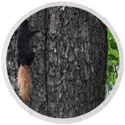 Black Squirrel With Blond Tail Two  Round Beach Towel