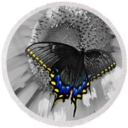 Black Swallowtail And Sunflower Color Splash Round Beach Towel