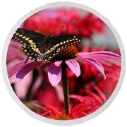 Black Swallowtail Butterfly With Coneflower And Monarda Round Beach Towel