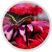Black Swallowtail Butterfly With Coneflowers And Bee Balm Round Beach Towel