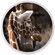 Black Tongue Of The Giraffe Round Beach Towel