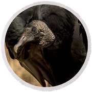 Black Vulture 2 Round Beach Towel