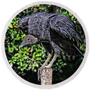 Black Vulture On A Fence Post Round Beach Towel
