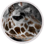 Black  White And Color Giraffe Round Beach Towel