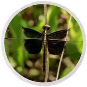 Widow Skimmer Dragonfly Female Round Beach Towel