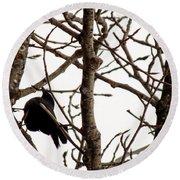 Blackbird In A Tree Round Beach Towel