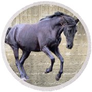 Blackhorse Poetry Round Beach Towel
