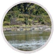Blanco River - Texas Round Beach Towel