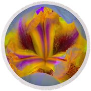 Blazing Heart Of An Iris Round Beach Towel