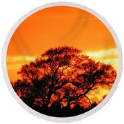 Blazing Oak Tree Round Beach Towel