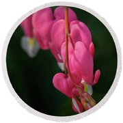 Bleeding Hearts Flowers Round Beach Towel