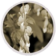 Bleeding Hearts In Sepia Round Beach Towel