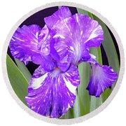 Blended Beauty - Bearded Iris Round Beach Towel