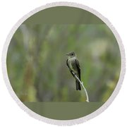 Blending In Round Beach Towel