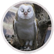 Blinking Owl Round Beach Towel