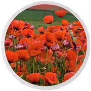 Bloom Red Poppy Field Round Beach Towel