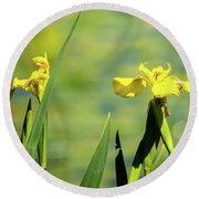 Blooming At Green Lake Round Beach Towel